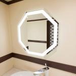 鏡照明輝(女優ミラー)日本武道館様 トイレ